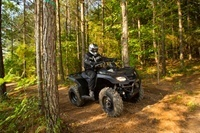 2016 Suzuki KingQuad 400ASi Limited Edition in Florence, South Carolina