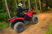 2016 Suzuki KingQuad 400FSi in Warren, Michigan