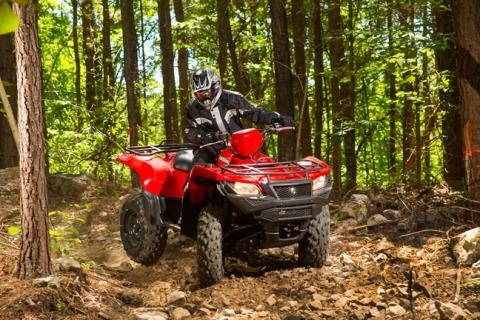 2016 Suzuki KingQuad 500AXi in Winterset, Iowa