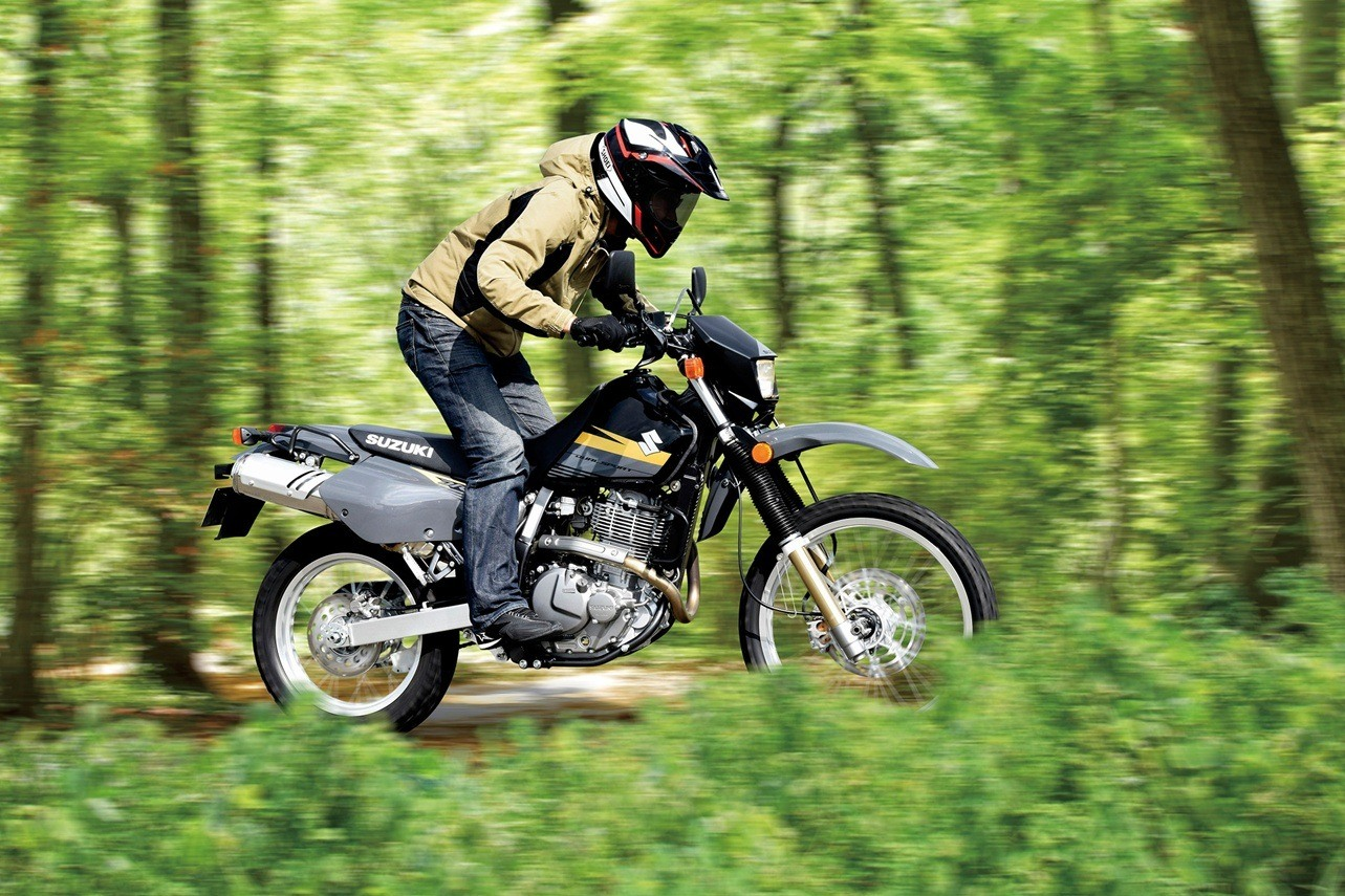 2016 Suzuki DR650S in Warren, Michigan