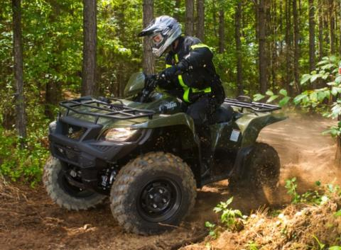 2017 Suzuki KingQuad 750AXi in Albemarle, North Carolina