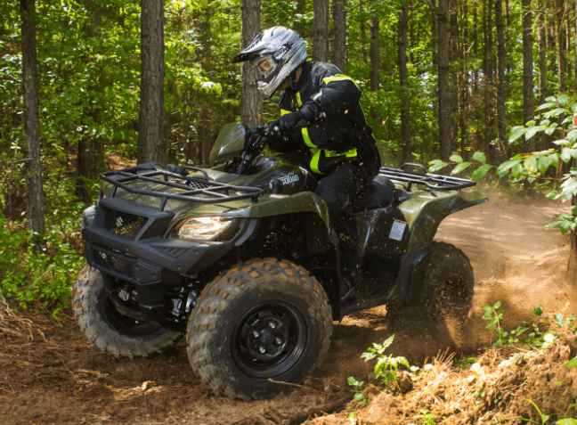 2017 Suzuki KingQuad 750AXi in Baldwin, Michigan