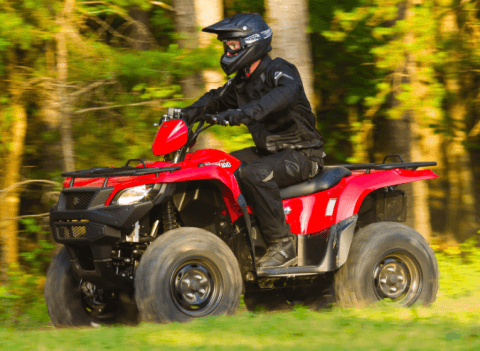 2017 Suzuki KingQuad 750AXi Power Steering in Coloma, Michigan