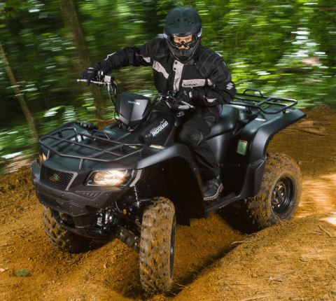 2017 Suzuki KingQuad 750AXi Power Steering Special Edition in Coloma, Michigan