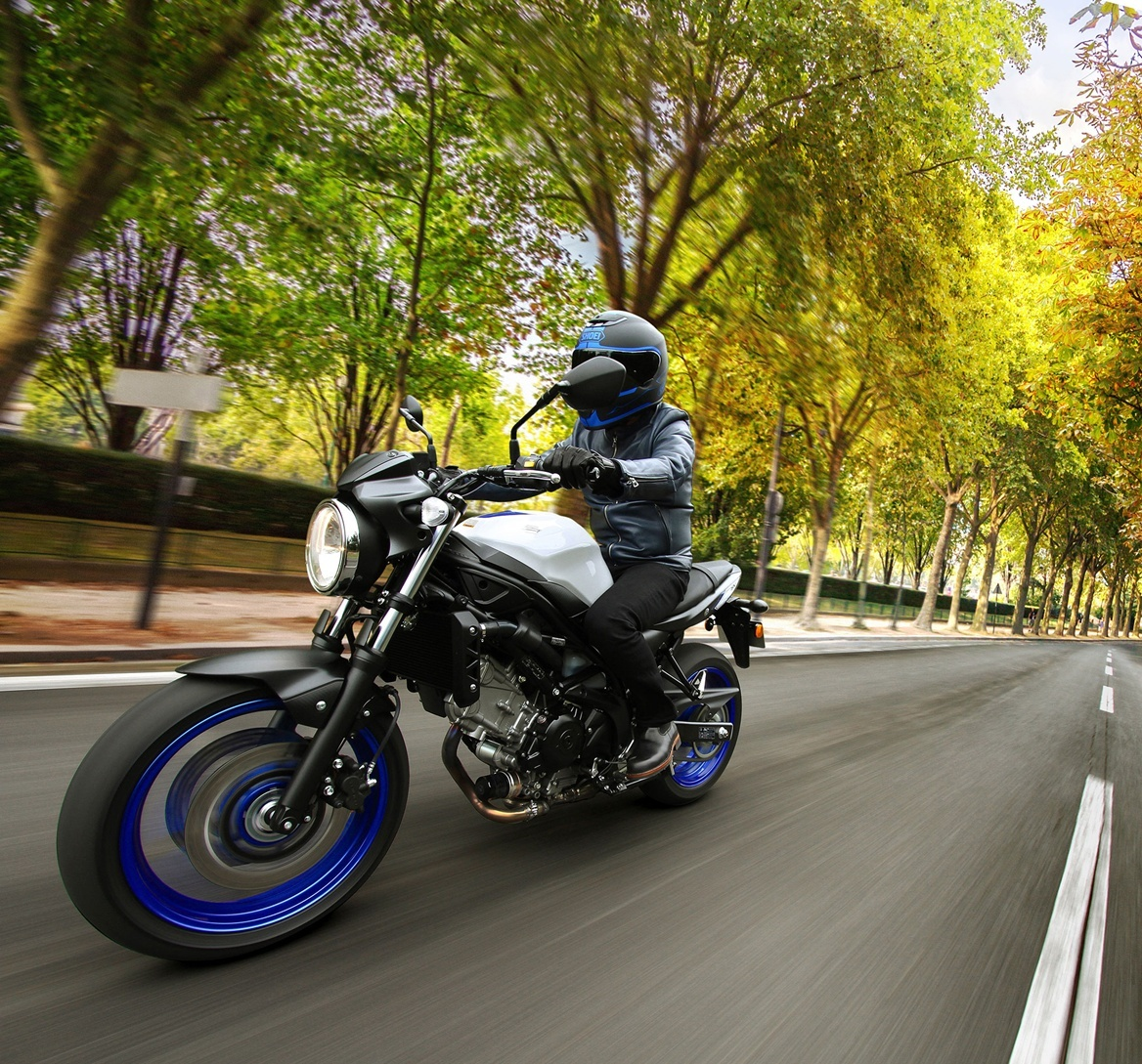 2017 Suzuki SV650 in Phillipston, Massachusetts