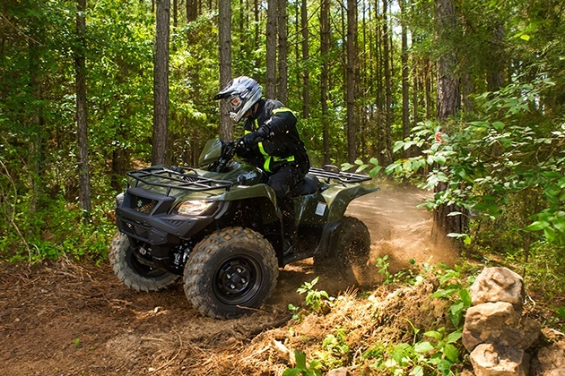 2018 Suzuki KingQuad 750AXi in Asheville, North Carolina