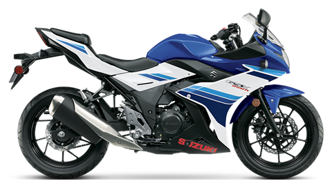 2019 Suzuki GSX250R ABS in Francis Creek, Wisconsin