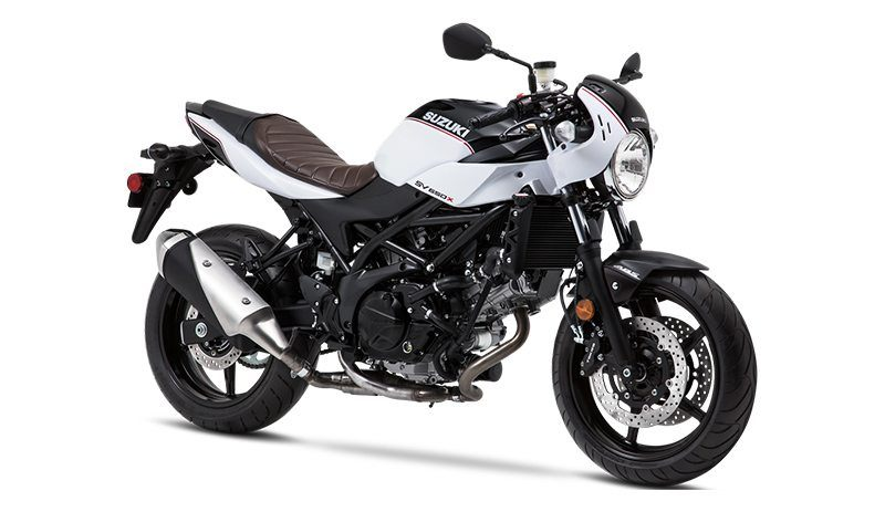 2019 Suzuki SV650X in Bakersfield, California - Photo 2