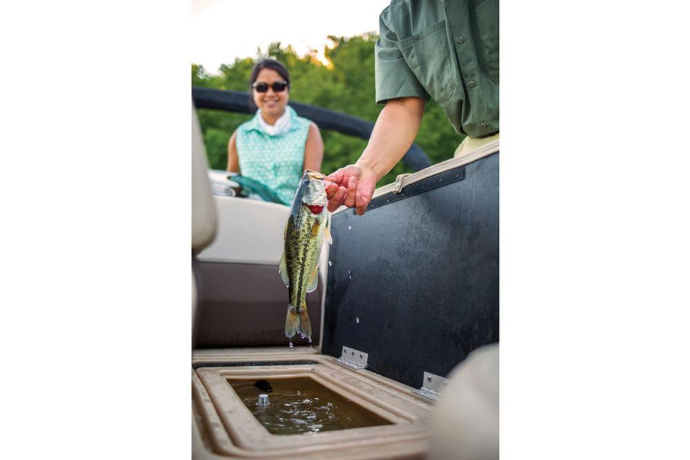 2019 Sun Tracker Fishin' Barge 20 DLX in Waco, Texas - Photo 10