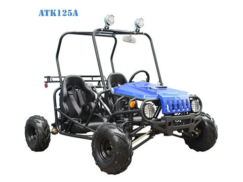 2017 Taotao USA ATK125A in Jacksonville, Florida - Photo 2