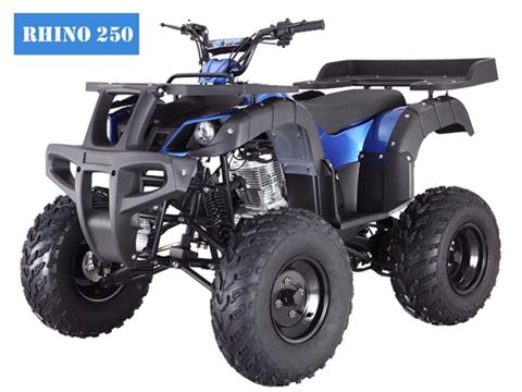 2018 Taotao USA Rhino250 in Dearborn Heights, Michigan