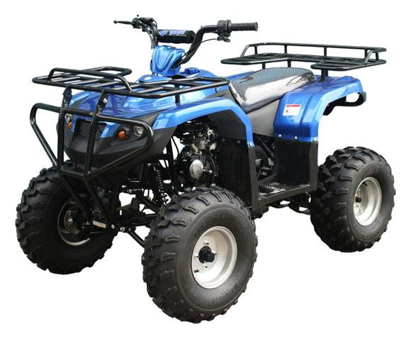 2019 Taotao USA ATA125F1 in Gresham, Oregon