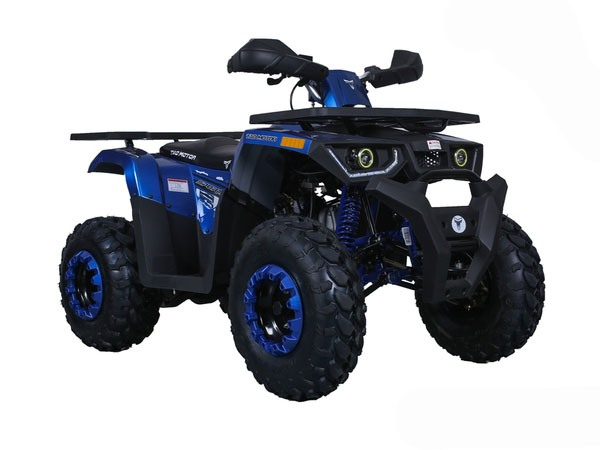 2019 Taotao USA Raptor 200 in Lafayette, Indiana - Photo 3