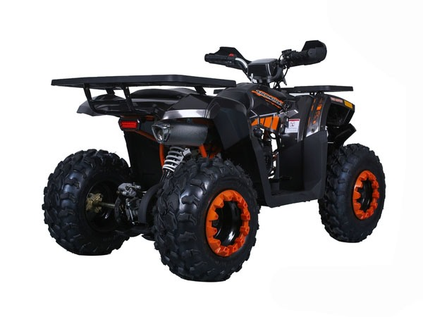 2019 Tao Motor Raptor 200 in Dearborn Heights, Michigan - Photo 5