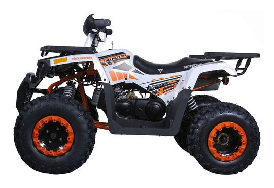 2019 Taotao USA RAPTOR200 in Lafayette, Indiana - Photo 2