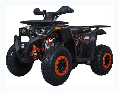 2019 Tao Motor Raptor 200 in Dearborn Heights, Michigan - Photo 1