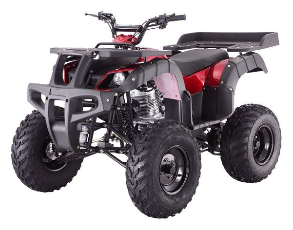 2019 Taotao USA Rhino250 in Gresham, Oregon