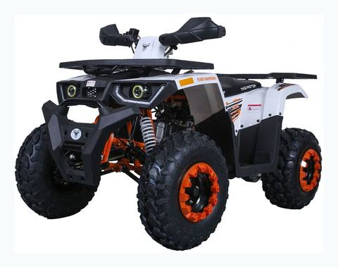 2020 Tao Motor Raptor 200 in Virginia Beach, Virginia - Photo 1