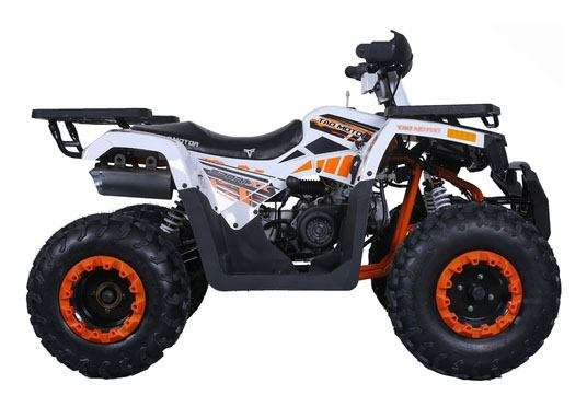 2020 Tao Motor Raptor 200 in Virginia Beach, Virginia - Photo 2