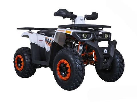 2020 Tao Motor Raptor 200 in Virginia Beach, Virginia - Photo 4