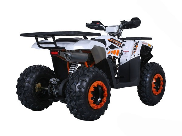 2020 Tao Motor Raptor 200 in Virginia Beach, Virginia - Photo 5