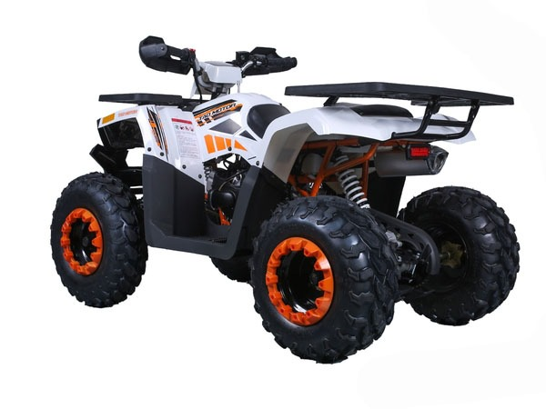 2020 Tao Motor Raptor 200 in Virginia Beach, Virginia - Photo 6