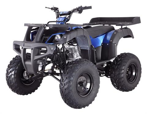 2020 Tao Motor Rhino250 in Dearborn Heights, Michigan