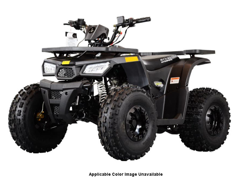 2021 Tao Motor Mudhawk 10 in Dearborn Heights, Michigan