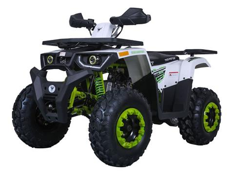 2021 Tao Motor Raptor 200 in Virginia Beach, Virginia