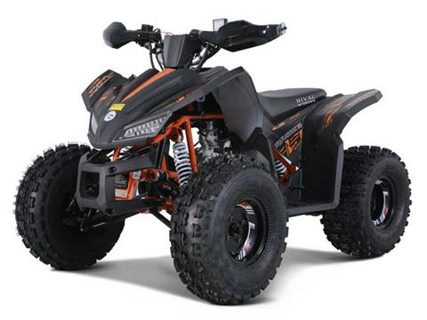 2021 Tao Motor Trailhawk in Dearborn Heights, Michigan