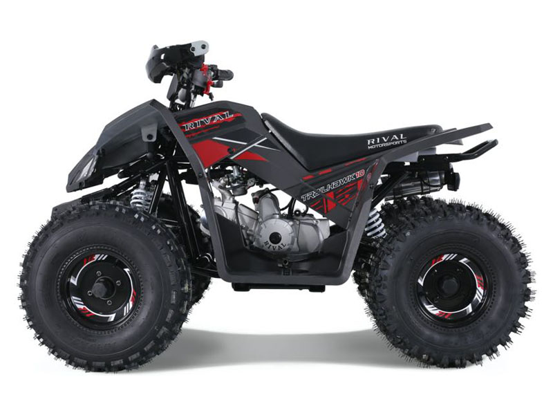 2021 Tao Motor Trailhawk in Dearborn Heights, Michigan - Photo 1
