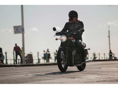 2014 Triumph Bonneville T100 Black in Cleveland, Ohio - Photo 6