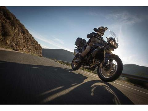 2014 Triumph Tiger 800 ABS in Cleveland, Ohio - Photo 8