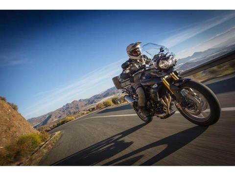2014 Triumph Tiger 800 ABS in Cleveland, Ohio - Photo 7