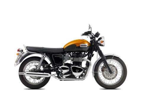 2015 Triumph Bonneville T100 in Belle Plaine, Minnesota - Photo 8
