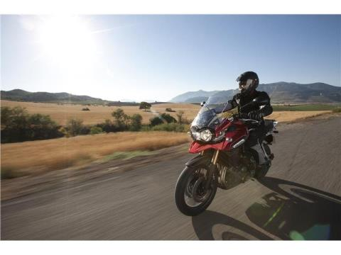 2015 Triumph Tiger Explorer ABS in Bakersfield, California - Photo 8