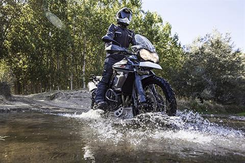 2017 Triumph Tiger 800 XCx in Kingsport, Tennessee