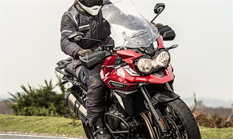2017 Triumph Tiger Explorer XCx in Stuart, Florida