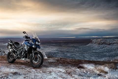 2017 Triumph Tiger Explorer XRx Low in Belle Plaine, Minnesota