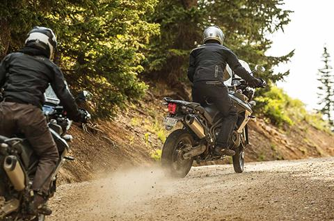 2018 Triumph Tiger 800 XCx in San Bernardino, California