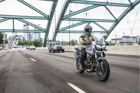 2018 Triumph Tiger 800 XRt in Shelby Township, Michigan