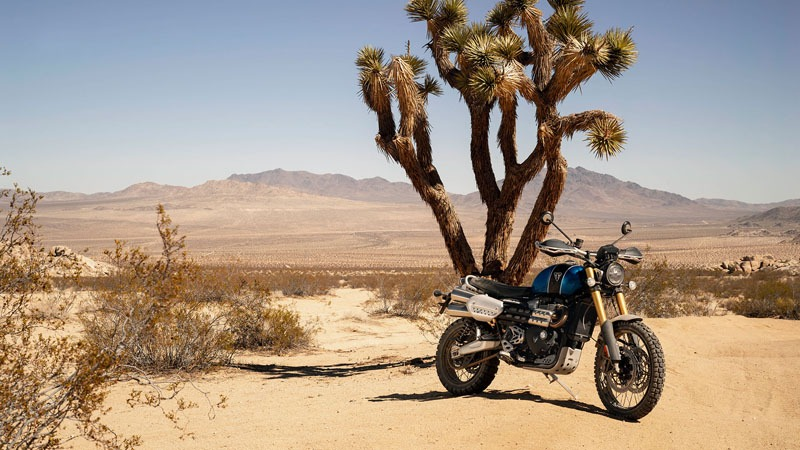 2019 Triumph Scrambler 1200 XE in Norfolk, Virginia - Photo 12