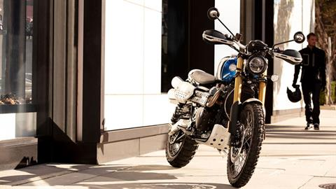 New 2019 Triumph Scrambler 1200 Xe Motorcycles In Katy Tx Stock