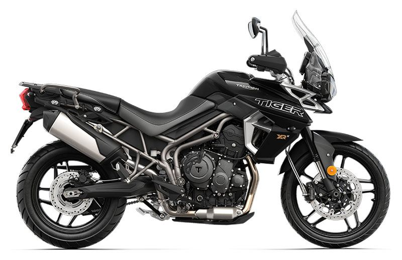 2019 Triumph Tiger 800 XRx Low in Springfield, Missouri