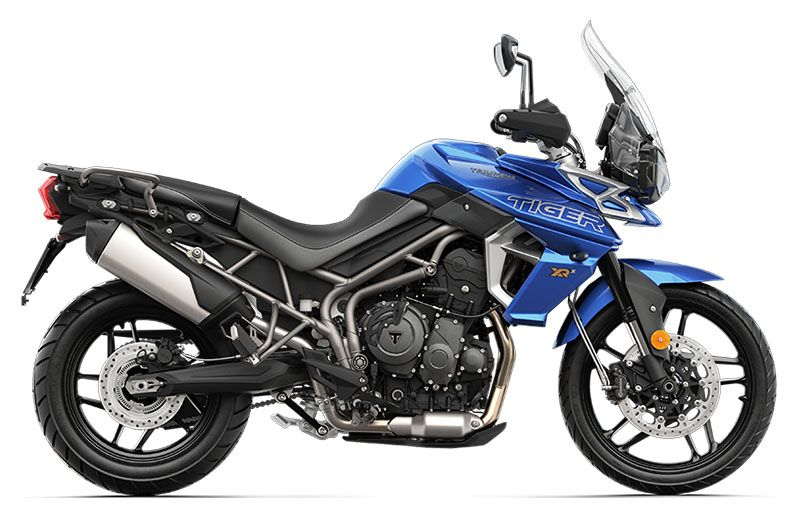 2019 Triumph Tiger 800 XRx Low in Kingsport, Tennessee