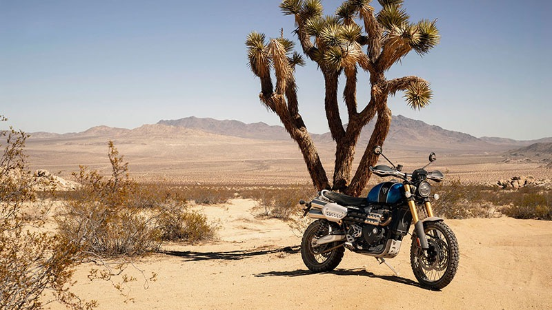 2020 Triumph Scrambler 1200 XE in Norfolk, Virginia - Photo 15
