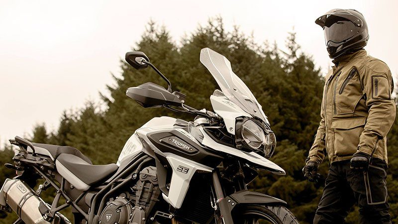 2020 Triumph Tiger 1200 Alpine Edition in Kingsport, Tennessee - Photo 3
