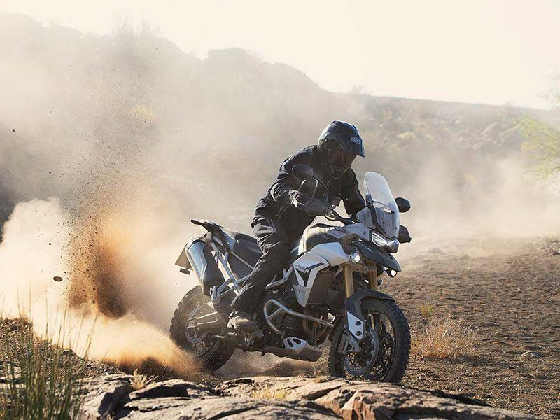 2020 Triumph Tiger 900 Rally Pro in Bakersfield, California - Photo 5