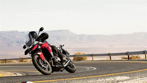 2021 Triumph Tiger 900 GT in Bakersfield, California - Photo 5