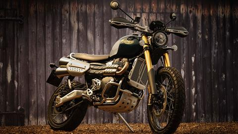 2022 Triumph Scrambler 1200 Steve Mcqueen Edition in Greensboro, North Carolina - Photo 5